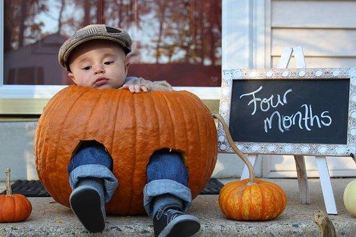 Halloween, Pumpkin, Fall, Child, Thanksgiving