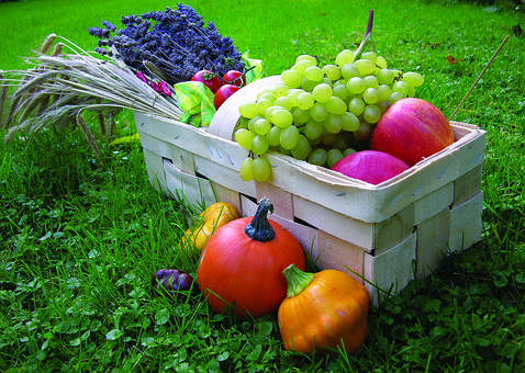 Fruit, Basket, Food, Garden, Apple, Pumpkin, Autumn