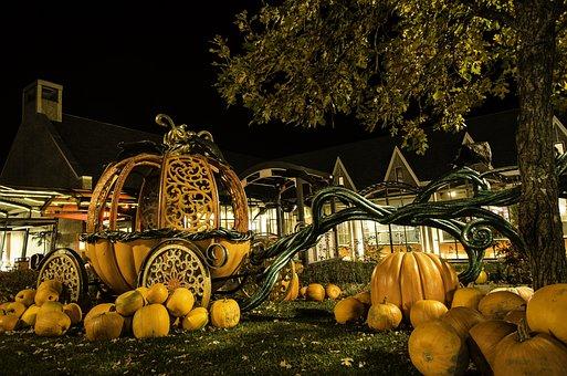 Pumpkin, Fall, Halloween, Lantern, Fruit