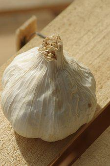 Garlic, Garlic White, Food, Head Of Garlic