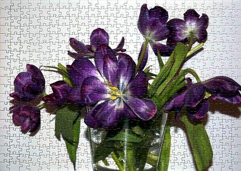Flower, Plant, Nature, Jigsaw Puzzle, Puzzle