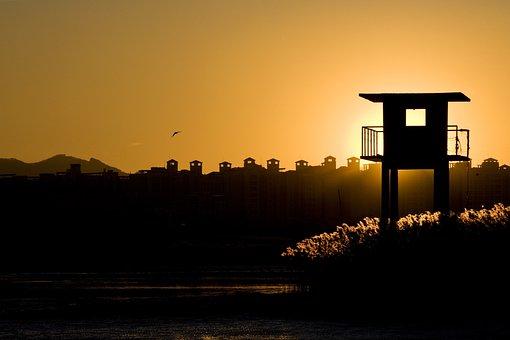 Sunset, Silhouette, Glow, Busan Sea, Reed, Glow Sea