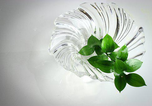 Nature, Glass, Texture, Clear, Design, Natural, Green