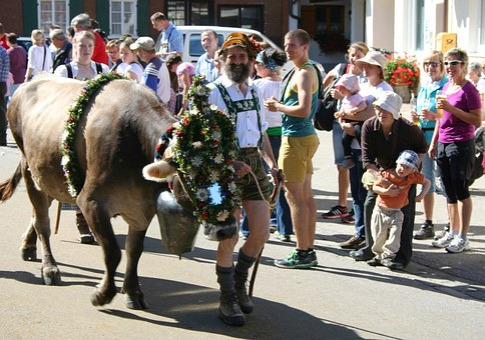 Allgäu, Bavaria, Viehscheid, Tradition, Customs