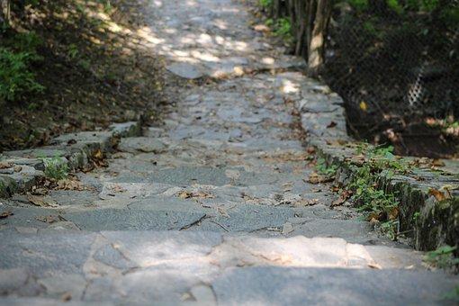 Stair, Down, Climbing Stairs, Leaves, Avar, Autumn