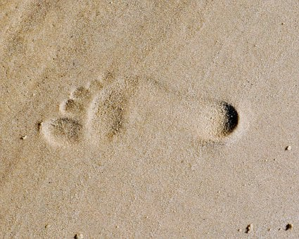 Footprint, Sandy, Beaches, Brown, Coastal, Lands