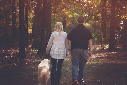 Woman, Boy, Walking, Dog, Backside, Mother And Son
