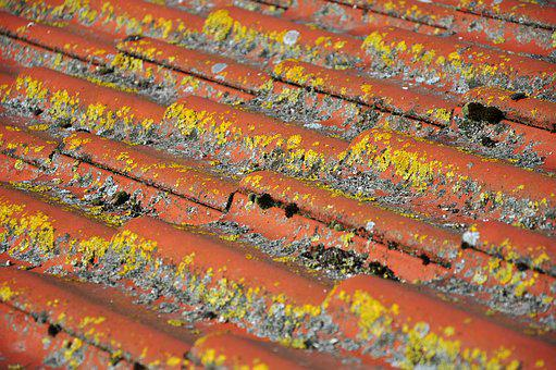 Roof, Tile, Clay Tiles, Pantile, Red, Cross, Flat