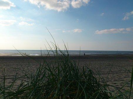 Sea, North Sea, Beach, Holiday, Edge Of The Sea, Sand