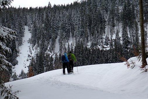 Snowshoeing, Snow Shoes, Snow, Alpinism, Bergsport