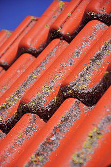 Roof, Tile, Clay Tiles, Pantile, Red, Steep, Terracotta