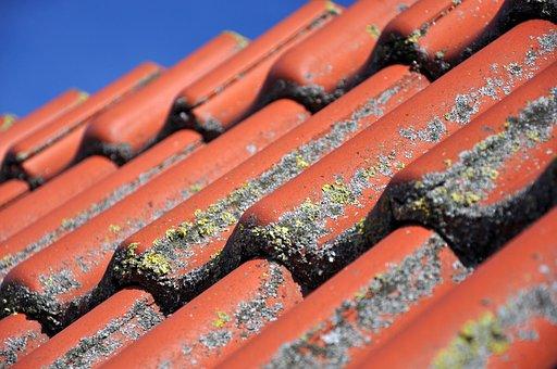 Roof, Tile, Clay Tiles, Pantile, Red, Diagonal