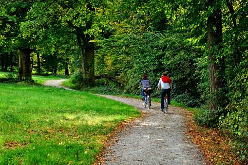 Cycling, Cyclists, Bicycle Tour, Tour, Bike, Away, Lane