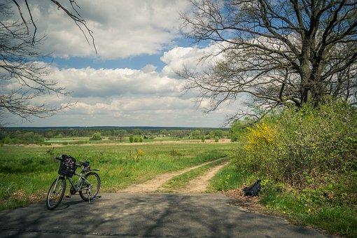 Bike, Nature, Village, Tour, Poland, Way, Tree, Scenery