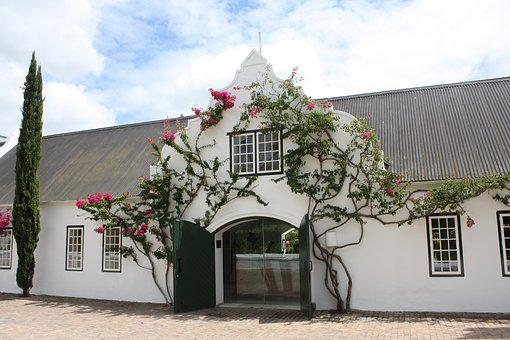 South Africa, Winery, Input, Home, Winelands, Tourism