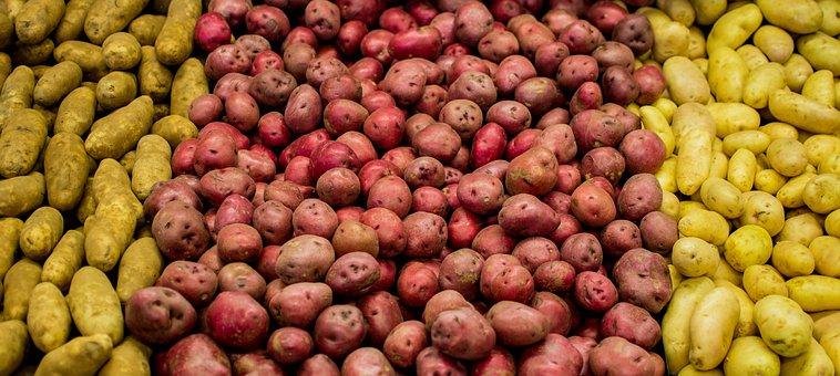 Food, Healthy, Market, Fruit, Vegetable, Nutrition