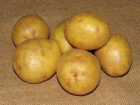 Potato, Potatoes, Earth Apple, Vegetables, Food
