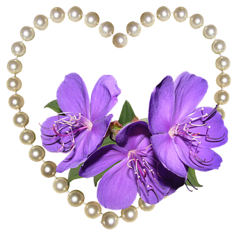 Heart, Pearls, Flowers, Decoration, Romantic, Valentine