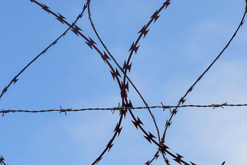 Barbed Wire, Wire, Fence, Forbidden, Jail, Security