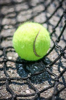 Tennis, Outdoors, Closeup, Ball, Web, Ground, Summer