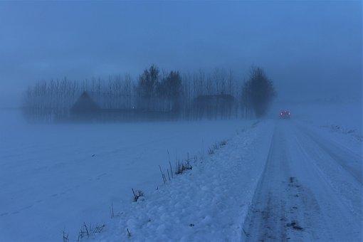 Mist, Hazy, Winter, Snow, Nature, Storm, Snow Landscape