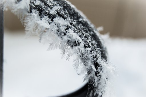Cold, Winter, Nature, Frost, Snow, Closeup, Frozen