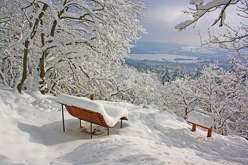 Snow, Winter, Cold, Frost, Frozen, Nature, Landscape