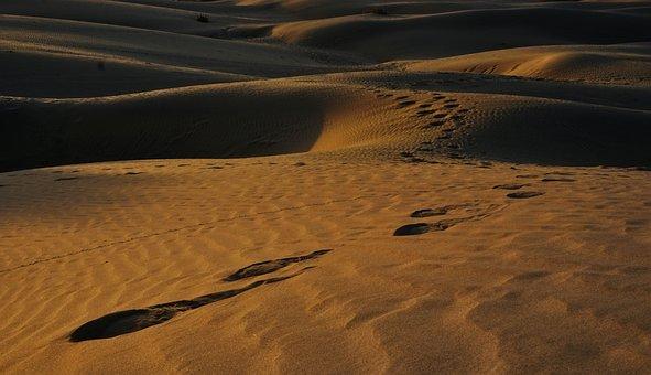 Tracks In The Sand, Prints, Footprints, Sand, Desert