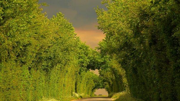 Country Road, Saint Aubin