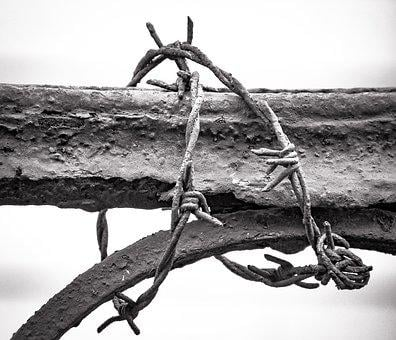 Metal, Barbed Wire, Rusted, Decay, Rusty