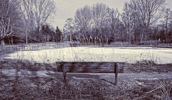 Bench, Wooden Bench, Pond, Frozen, Ice, Frozen Over