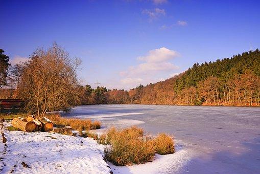 Wintry, High Wildlife Park Rheinboellen, Hunsrück