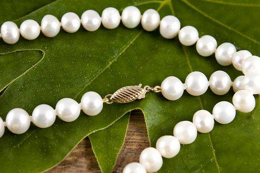 Jewelry, Necklace, Pearls, White Pearl, Gold, Nature