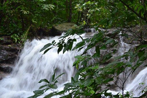 Waterfall, Water, Nature, Stream, River, Kathu
