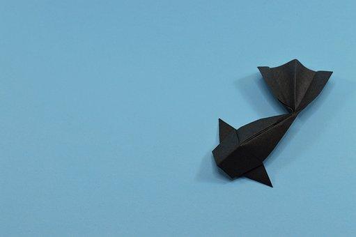 Blue, Carp, Origami, Fish, Water, Black, Lake, Pond