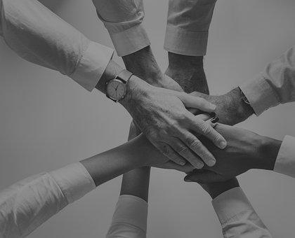 Cooperation, Handshake, People, Partnership, Adult