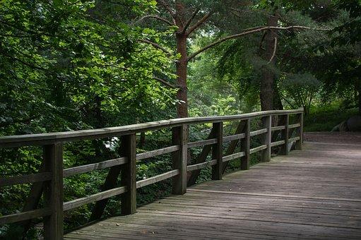 Bridge, Bridge Railing, Wood, Tree, Nature, Landscape