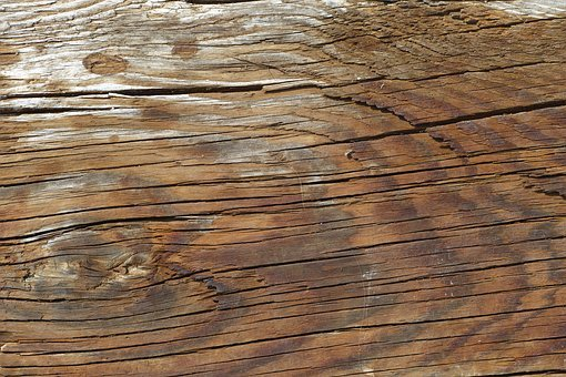 Wood-fibre Boards, Tree, Ground, Pattern, Timber, Brown