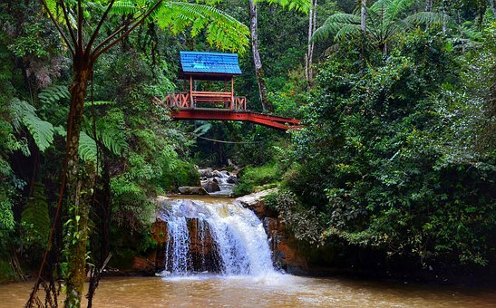 Cameron, Highlands, Malaysia, Waterfall, Thompson Falls