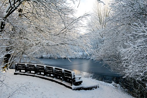 Winter, Snow, Frost, Cold, Frozen, Amsterdam