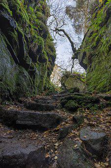 Lud's Church, Peak District, Natural Chasm, Nature