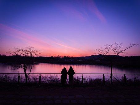 Sunset, Silhouette, Scenery, Wood, Lake, Sea, Sky
