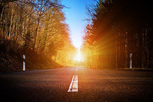 Road, Forest, Trees, Nature, Away, Target, Light, Sun