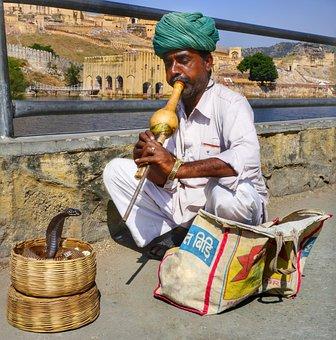 Snake, Charmer, Amber Fort, Amer, Pungi, Instrument