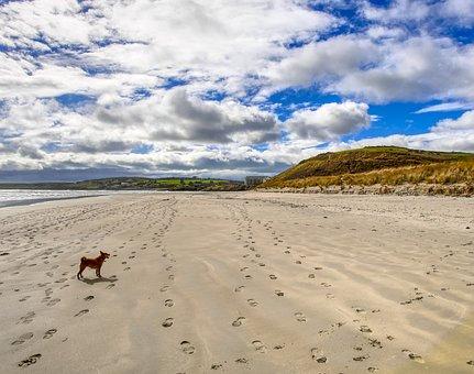 Sand, Beach, Landscape, Desert, Seashore, Ireland