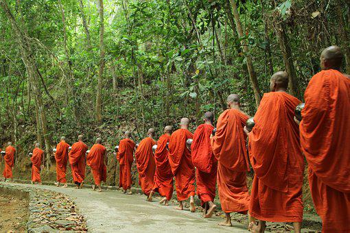 Monk, Buddha, Religion, Travel, Temple, Monks, Walk