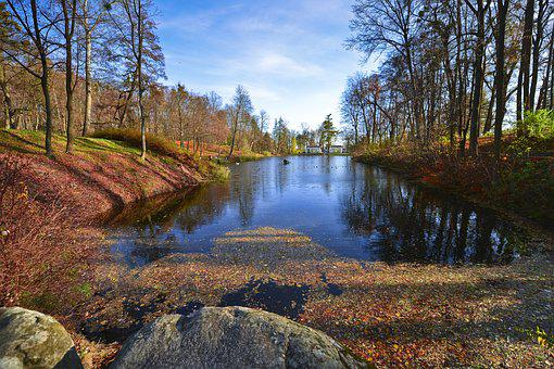 Water, Nature, Tree, Outdoors, Landscape, Wood, Park