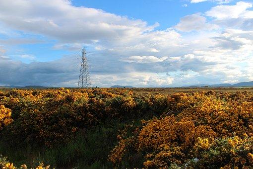 Nature, Panorama, Landscape, Sky, Plant, Strommast