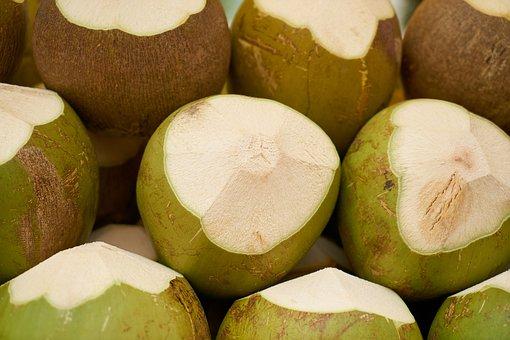 India Coconut, Fruit, Fresh, Healthy, Tropical Fruit