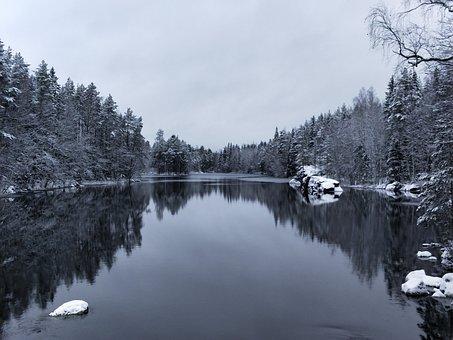 Tree, Snow, Lake, Landscape, Nature, Reflection